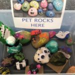 Pet Rocks for Cupcakes at the Cake Stop